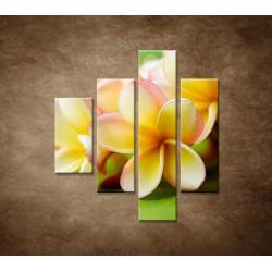 Obrazy na stenu - Žltá orchidea - 4dielny 80x90cm