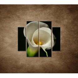 Obrazy na stenu - Kala - 4dielny 100x90cm