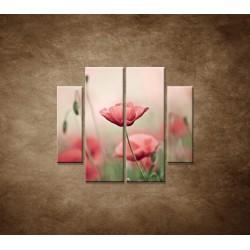 Obrazy na stenu - Vlčie maky - 4dielny 100x90cm