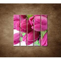 Obrazy na stenu - Tulipány - 5dielny 100x100cm